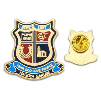 Christian School metal pin with imitation hard enamel infilled